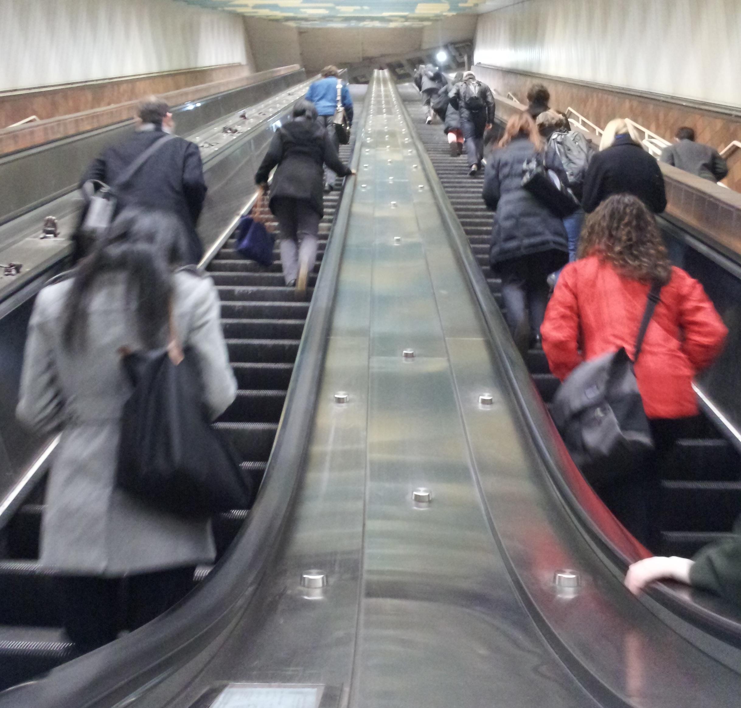 Airport Escalator